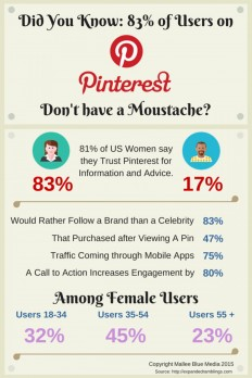 Did you Know: 83% of Pinterest Users Don't Have a Moustache? | Visual.ly