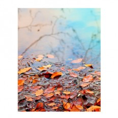 Autumn Nature photography fall wall decor leaves wall by gonulk | We Heart It