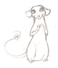 rats drawing - Google Search