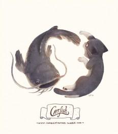 Catfish in Illustration
