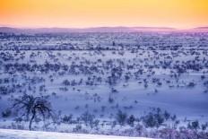 Arctic Desert by Tiina Törmänen