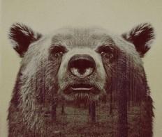 Double-Exposure Animal Portraits By Norwegian Photographer | Bored Panda