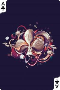 David Delin | Creative Cards Project