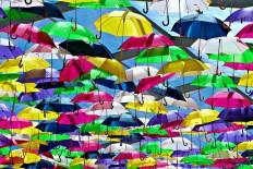 Umbrella Series by Patrícia Almeida