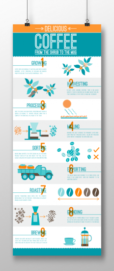 Coffee Production Infographic on