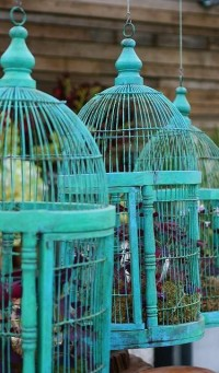 For the Home / Totally Loving Turquoise