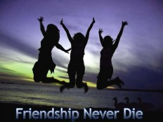 30+ Lovely Friendship Quotes