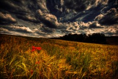 Stunning HDR Landscape - Photography Wallpapers