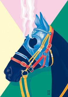 SOIRÉE GRAPHIQUE Nº6 / 'Hard Race, Steaming Horse' - www.vicentegarciamorillo.com