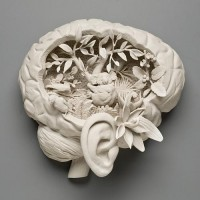 Designspiration — Kate MacDowell - \