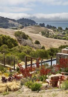 Tiburon Hillside - Contemporary - Landscape - other metro - by Arterra Landscape Architects