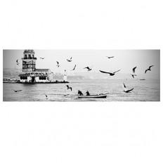 gonulk (Large istanbul panorama, istanbul city, black and...)