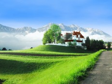 25+ Magnificent Collection Of Green Wallpapers | GraphicsLava