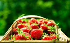 Strawberries Bokeh - Photography Wallpapers