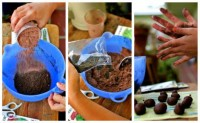 how to start seeds + make seed bombs! | going home to roost