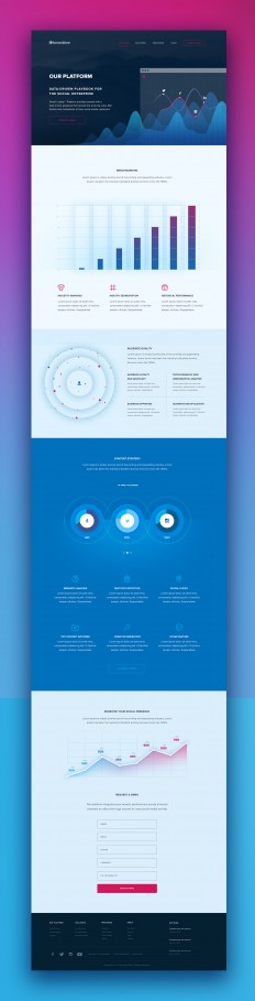 Analytics-Platform-Page.jpg by Michael Pons