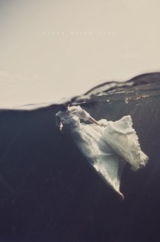 Keep Your Eyes On Me – Underwater Visual Art Series on Inspirationde