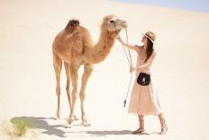 Sahara | Fashionvibe