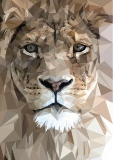 Vector animal illustrations on Inspirationde