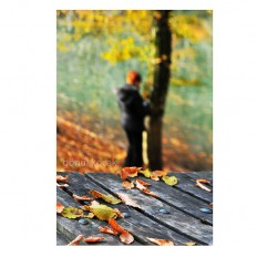 Autumn Fall leaves women alone Nature photography Wall by gonulk