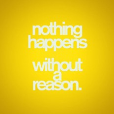 Every Thing Happens For A Reason Quotes