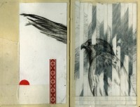 eagle.jpg (900×686)