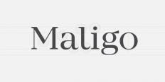 Mirador - Webfont & Desktop font « MyFonts