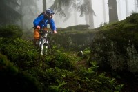 Portfolio Summer : Mountain Bike