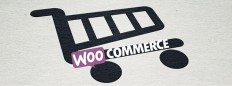 WooCommerce Development Company | Thrive Internet Marketing