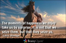 The moments of happiness we enjoy take us by surprise. It is not that we seize them, but... - Ashley Montagu at BrainyQuote