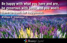 Be happy with what you have and are, be generous with both, and you won't have to hunt... - William E. Gladstone at BrainyQuote