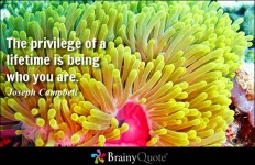 The privilege of a lifetime is being who you are. - Joseph Campbell at BrainyQuote