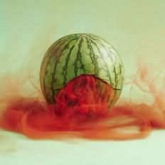 The Secret Lives of Fruits and Vegetables by Maciek Jasik