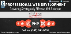 Profesional-Web-Development.jpg (1032×498)
