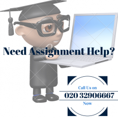 How Professional Assignment Writing Service Can Boost Your Grades | Quality Writing Solutions