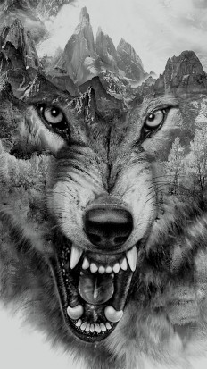 Wolf Collage | printed tee design for Zara on Inspirationde
