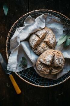 gluten-free artisan bread in 5 minutes a day: seeded 100% whole grain gf bread — dolly and oatmeal