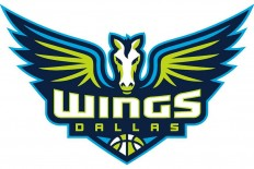 Brand New: New Name and Logo for Dallas Wings