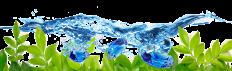Artificial Wreaths | Silk Wreaths | Silks Are Forever