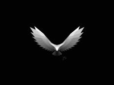 Eagle | Logo Design by simc