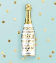 Chandon Holiday #BestieWishes champagne circle design packaging design on Inspirationde