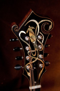 Mandolins Rule The World