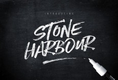 Stone Harbour Brush Font + Extras ~ Fonts on Creative Market