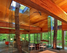 Trees Encased in Glass Continue to Grow through House | Modern House Designs