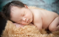 New Born 6 | New Born Photo Shoots Gallery | Chinese Photograpger