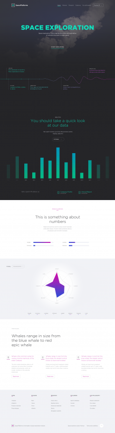 sp_dribbble_full.png by Ante Matijaca