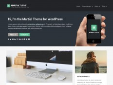 Martial | WPLift Free Themes