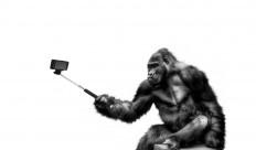 The ten best smartphones for selfie-lovers [Flipkart Stories]