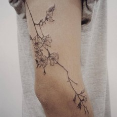 Fine line style cherry blossom tattoo on the right arm.Done by Doy