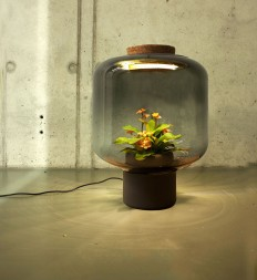 We Designed These Lamps To Grow Plants In Windowless Spaces | Bored Panda